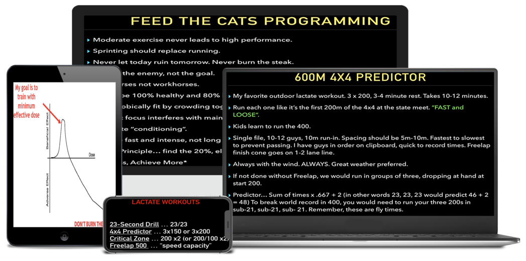 Tony Holler Feed the cats 400m
