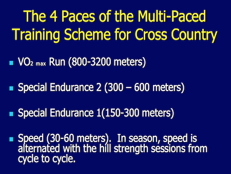 Shifting the Cross Country Training Paradigm